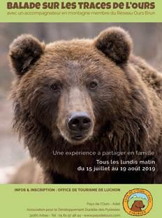 Balade sur les traces de l'ours