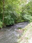 """Sentier de randonnée """"Le Bois des Dames"""""""