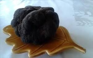Week-end de la truffe - Uzès