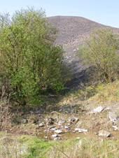 grenay - grands espaces et patrimoine nature - les terrils 58 et 58 bis