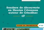 Sentiers en Hautes Cévennes autour de Génolhac n°10