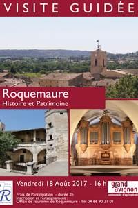 Visite guidée Roquemaure-Histoire & Patrimoine