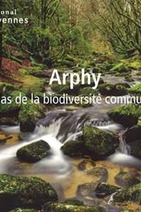 Animation : Une vieille forêt peuplée de coléoptères ? cela mérite quelques explications !