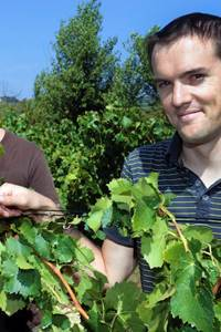 Balade vigneronne au Domaine des Romarins