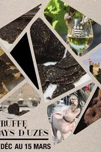 La saison de la truffe en Pays d'Uzès
