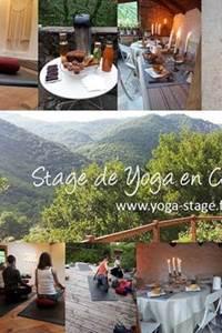 Stage: yoga-méditation-randonnée