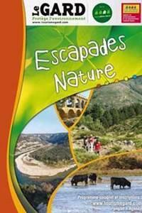 Escapades nature : Les habitats des champignons