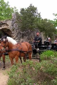 Les Chemins du Pont du Gard