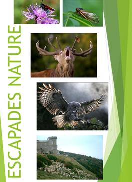 Escapades Nature