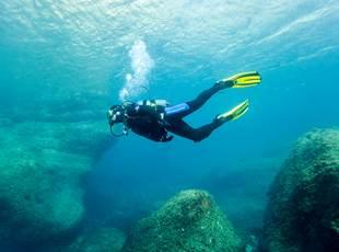 Test snorkeling! - Cip Collioure - Diving