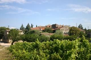 Domaine Viticole du Malignon