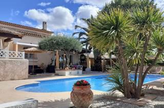 Les Gîtes de l'Hacienda : Papagayo