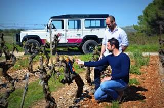 Vigno'vins