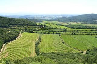 AOP Les Côtes du Rhône