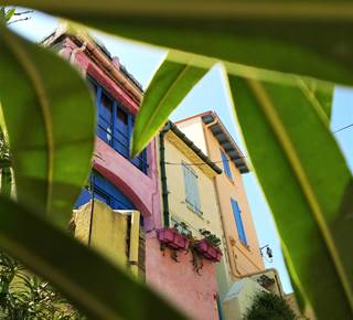Collioure, City of painters
