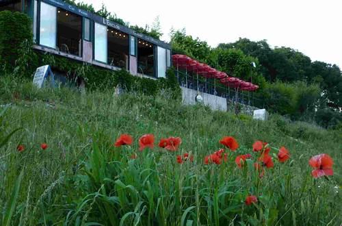 l'enclos restaurant proche pont du gard ©