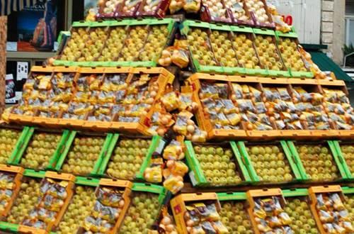 Foire pomme oignons ©