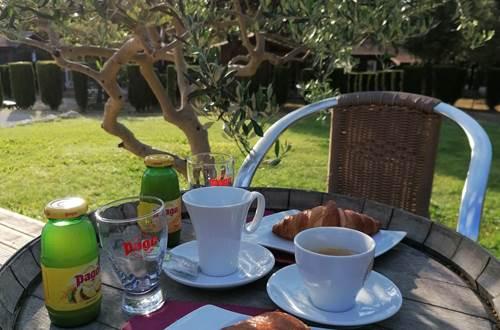 Petit Déjeuner au soleil ©