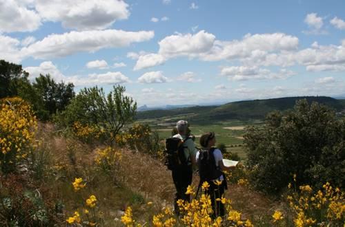 Panorama sur la plaine de la Vaunage ©