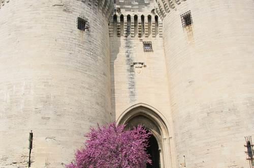 Les Tours Jumelles © @Mairie de Villeneuve lez Avignon
