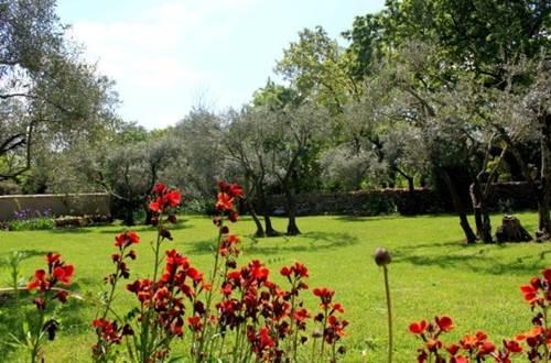 Obofix jardin fleuri © Yvan GREER